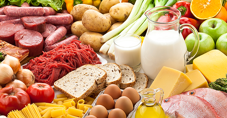 Animal products and foods and vegetarian/vegan foods